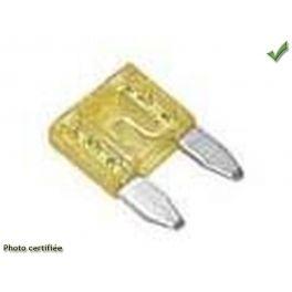 MICRO FUSIBLE A BROCHES 20 A PAR 25 Pieces